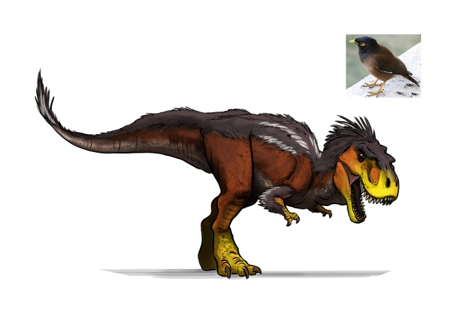 DinoDesignSheet_Tarbo_colour_V01